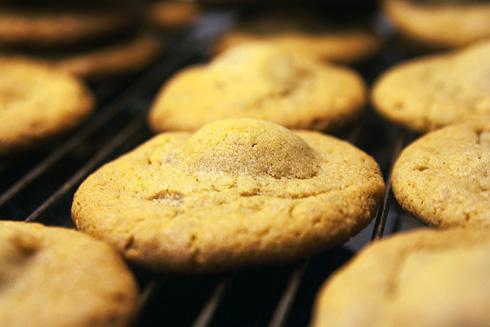 Färdiggräddade snickerscookies