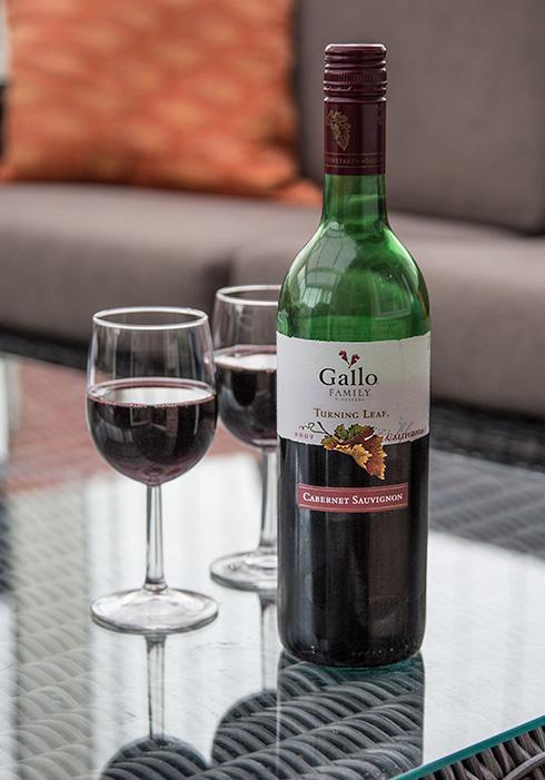 vin gallio