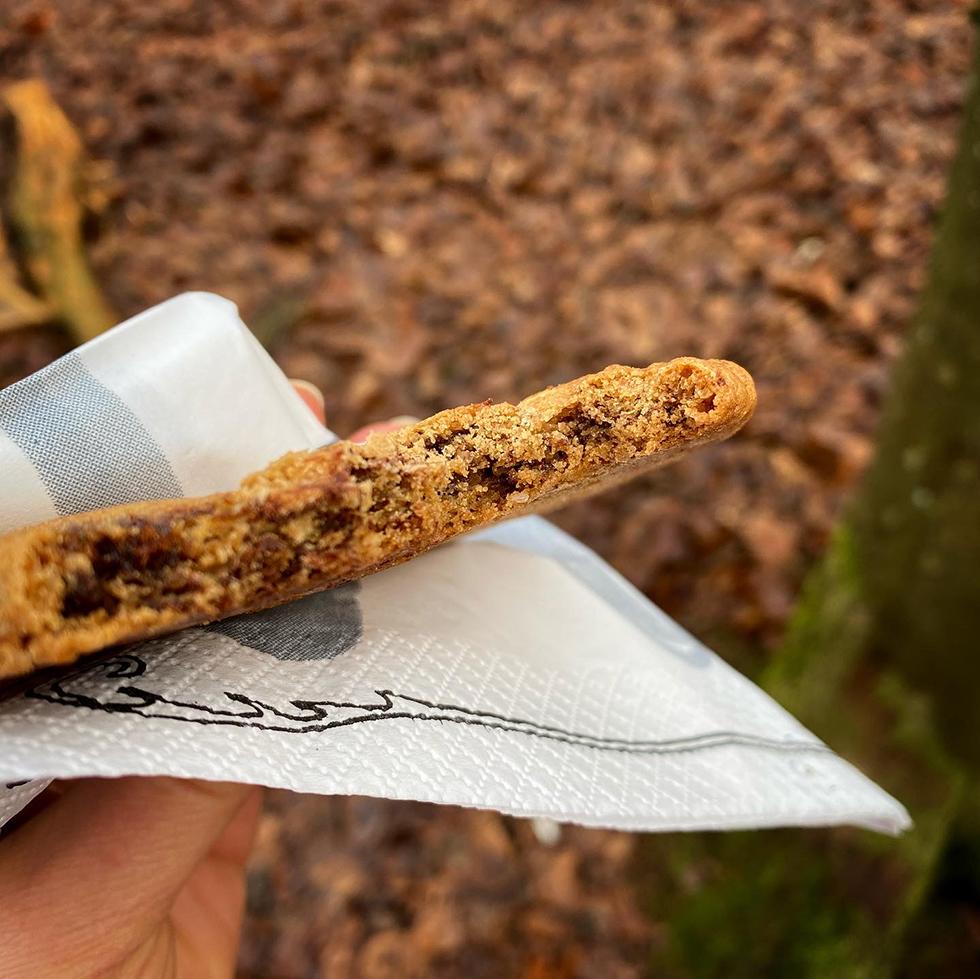 Chocolate chip cookies med surdeg och brynt smör. Perfekt picknick mat.